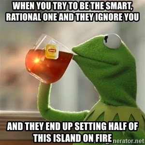 Kermit The Frog Drinking Tea - When you try to be the smart, rational one and they ignore you and they end up setting half of this island on fire