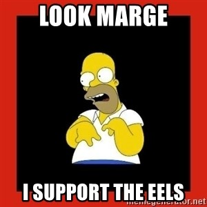 Homer retard - Look Marge I Support the Eels