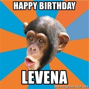 Stupid Monkey - Happy Birthday Levena