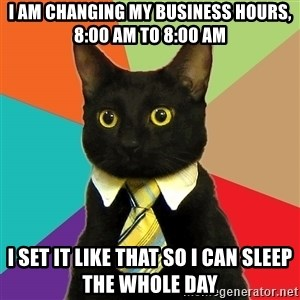 Business Cat - I am changing my business hours, 8:00 am to 8:00 am I set it like that so i can sleep the whole day