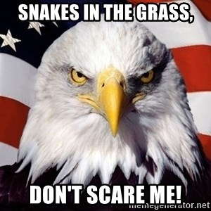 American Pride Eagle - Snakes In The Grass, Don't Scare Me!