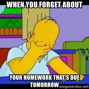 Homer Facepalm - when you forget about your homework that's due tomorrow