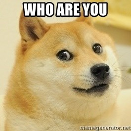 Dogeeeee - who are you