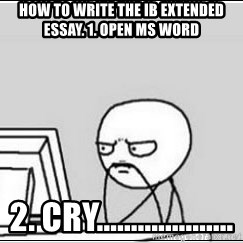 computer guy - how to write the ib extended essay. 1. open ms word 2. cry....................