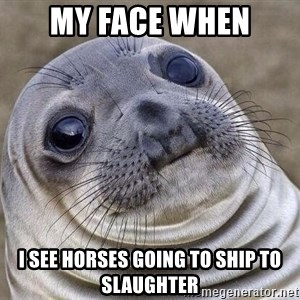 Awkward Seal - My face when I see horses going to ship to slaughter