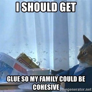 newspaper cat realization - I should get glue so my family could be cohesive