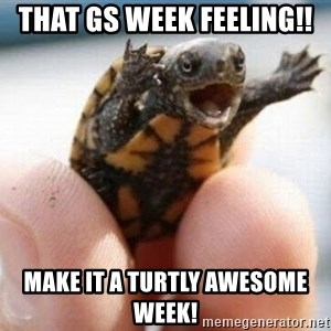 angry turtle - That GS Week Feeling!! Make it a turtly awesome week!