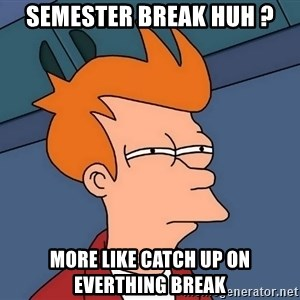 Futurama Fry - Semester break huh ? More like catch up on everthing break
