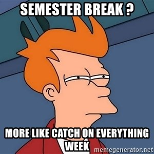 Futurama Fry - Semester break ? More like catch on everything week