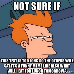 Futurama Fry - not sure if this text is too long so the others will say it's a funny meme like also what will i eat for lunch tomorrow?
