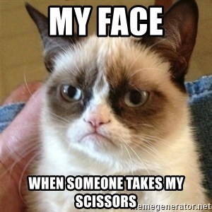 Grumpy Cat  - my face when someone takes my scissors