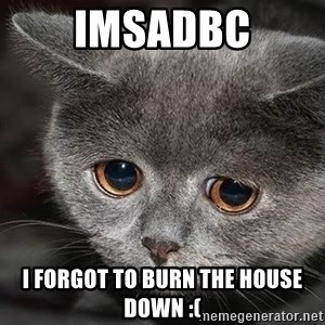 sad cat - Imsadbc I forgot to burn the house down :(