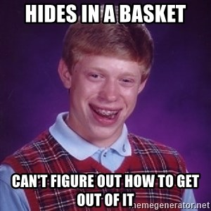 Bad Luck Brian - Hides in a basket can't figure out how to get out of it