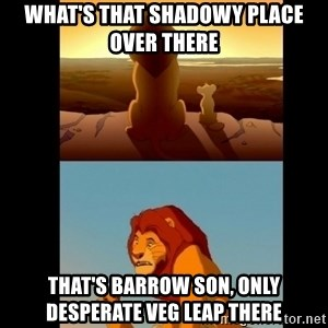 Lion King Shadowy Place - what's that shadowy place over there that's barrow son, only desperate veg leap there