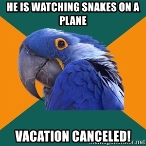 Paranoid Parrot - He is watching snakes on a plane vacation canceled!