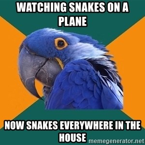 Paranoid Parrot - watching snakes on a plane now snakes everywhere in the house