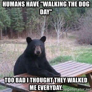 """Patient Bear - Humans have """"Walking the dog day"""" Too bad i thought they walked me everyday."""