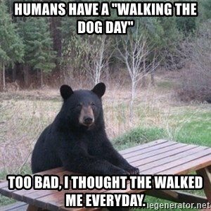 """Patient Bear - Humans have a """"walking the dog day"""" Too bad, I thought the walked me everyday."""
