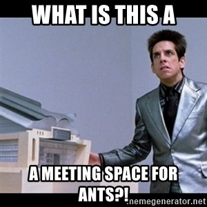 Zoolander for Ants - what is this a a meeting space for ants?!