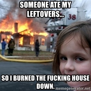 Disaster Girl - Someone ate my leftovers... So I burned the fucking house down.