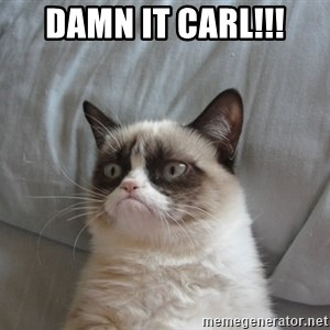 Grumpy cat good - DAMN IT CARL!!!