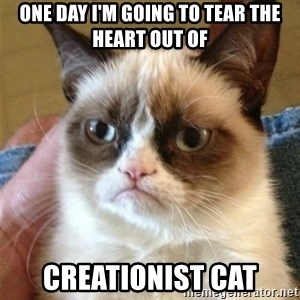 Grumpy Cat  - One day I'm going to tear the heart out of Creationist Cat
