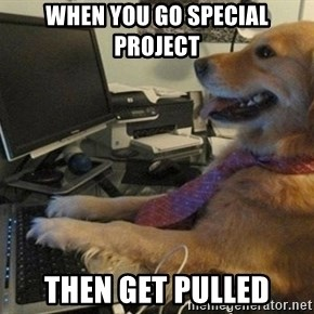 I have no idea what I'm doing - Dog with Tie - when you go special project then get pulled