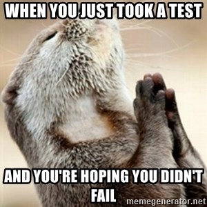 Praying Otter - When you just took a test  And you're hoping you didn't fail