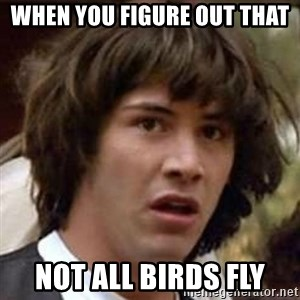 Conspiracy Keanu - When you figure out that not all birds fly