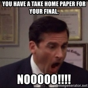 michael scott yelling NO - You have a take home paper for your final. NOOOOO!!!!