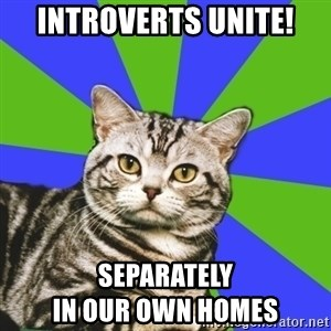Introvert Cat - Introverts unite! Separately                                In our own homes