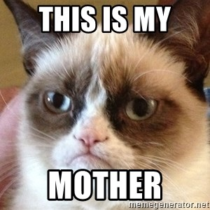 Angry Cat Meme - this is my  mother