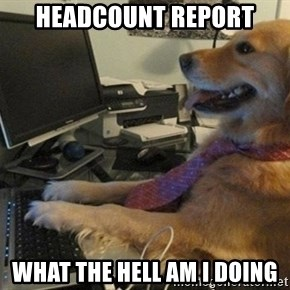 I have no idea what I'm doing - Dog with Tie - Headcount Report What the hell am I doing