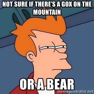 Futurama Fry - Not sure if there's a gox on the Mountain Or a bear