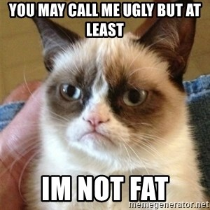 Grumpy Cat  - you may call me ugly but at least im not fat