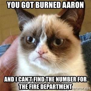 Grumpy Cat  - you got burned aaron and i can't find the number for the fire department