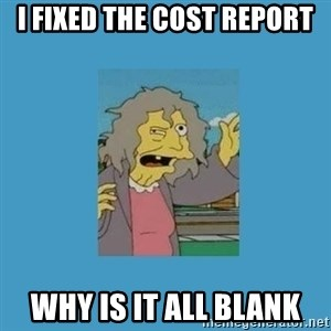 crazy cat lady simpsons - i fixed the cost report why is it all blank