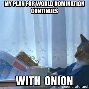 newspaper cat realization - My plan for world domination continues with  onion