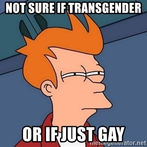Futurama Fry - Not sure if transgender  or if just gay