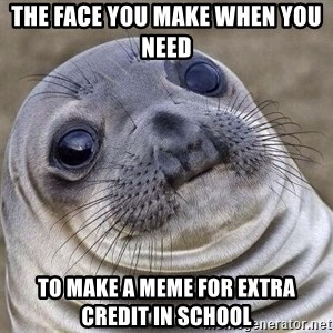 Awkward Seal - the face you make when you need  to make a meme for extra credit in school