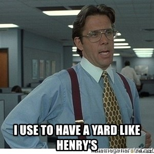 Yeah If You Could Just - I USE TO HAVE A YARD LIKE HENRY'S