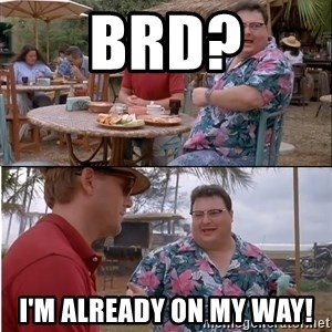 See? Nobody Cares - Brd? I'm already on my way!