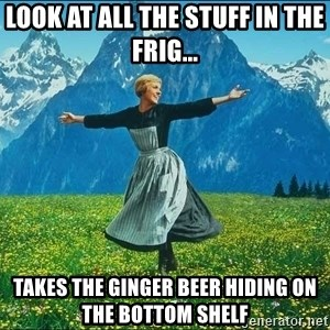 Look at all the things - look at all the stuff in the frig... takes the ginger beer hiding on the bottom shelf