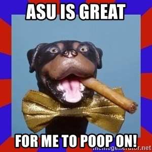 Triumph the Insult Comic Dog - ASU is great for me to poop on!