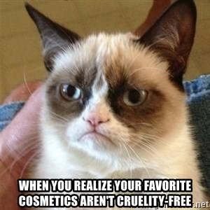 Grumpy Cat  - When you realize your favorite cosmetics aren't cruelity-free