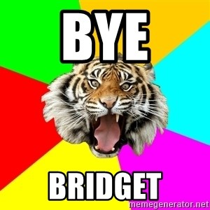 Time Of The Month Tiger - BYE Bridget