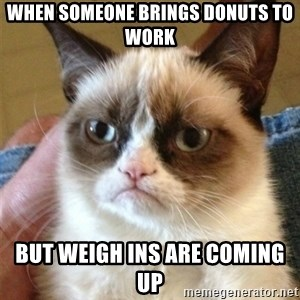 Grumpy Cat  - WHEN SOMEONE BRINGS DONUTS TO WORK BUT WEIGH INS ARE COMING UP