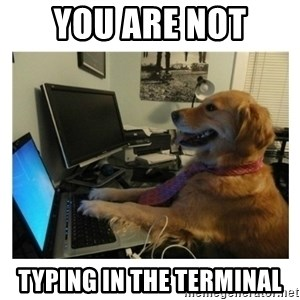 No Computer Idea Dog - You are NOT typing in the terminal