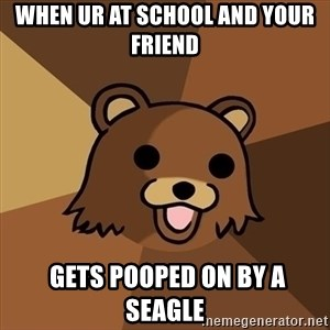 Pedobear - When ur at school and your friend  gets pooped on by a seagle