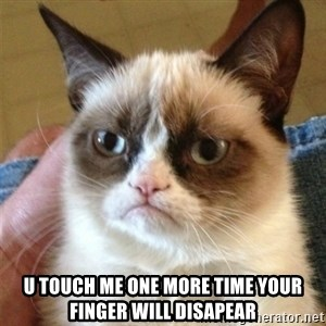 Grumpy Cat  - U touch me one more time your finger will disapear